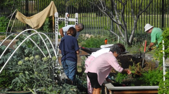 Benevilla Announces Surprise Community Garden Spring Clean Up May 20th